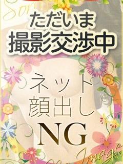 ひまわり-image-1