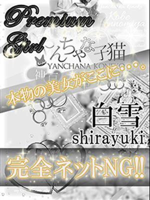 白雪(シラユキ)-image-1